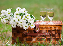 Thumbnail image for 10 Picnic-Inspired Wedding Ideas We Love